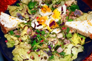 Green Salad with Egg and Chicken