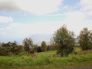 Maui's Upcountry Countryside