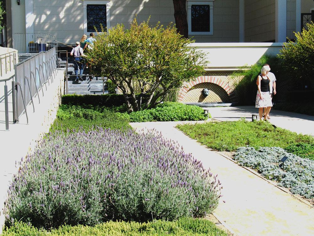 Discover herb garden at getty villa discover lavender for Villa garden